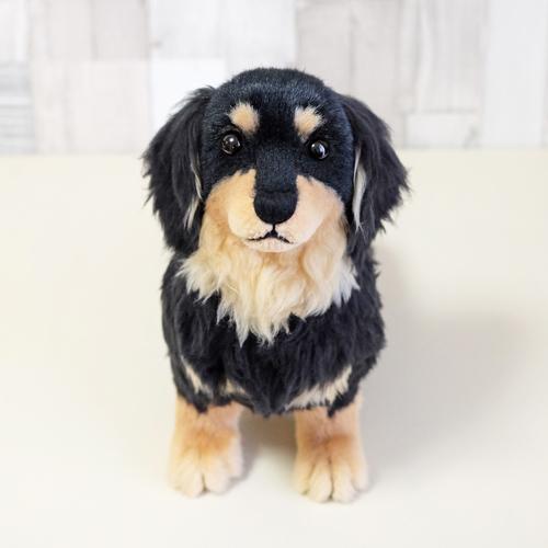 愛犬ダックスフンド そっくりぬいぐるみ 愛犬の写真 人気