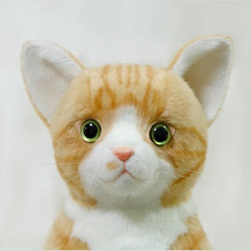 愛猫 アメショー 茶トラ猫のウェイトドール