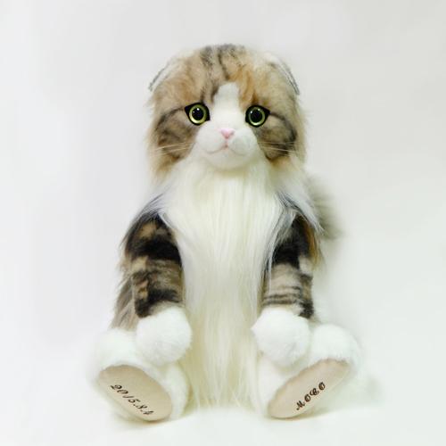 スコティッシュフォールドのウェイトドール ペットの人形