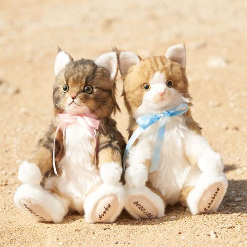 愛猫メインクーンのウェルカムドール ぬいぐるみ