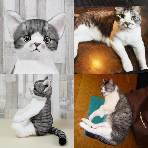 ペットロス 愛猫のぬいぐるみ サバトラ白猫 ウェイトドール