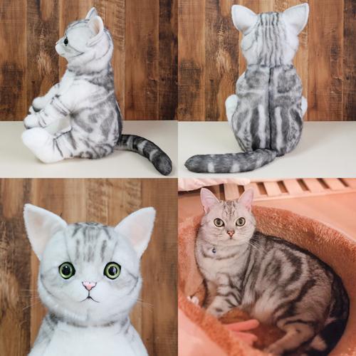 アメリカンショートヘアのウェイトドール 愛猫のぬいぐるみ制作