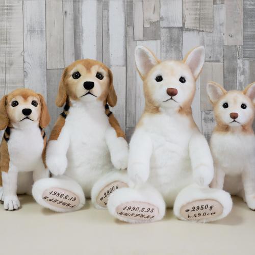 ウェイトドッグ ビーグルのぬいぐるみ 愛犬そっくりの人形
