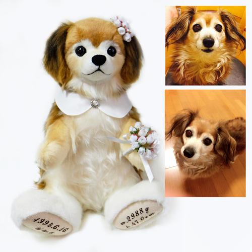 愛犬チワックスのぬいぐるみ ウェイトドール ペットロス