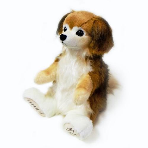 愛犬のぬいぐるみ チワワダックス ミックス犬 体重ベア