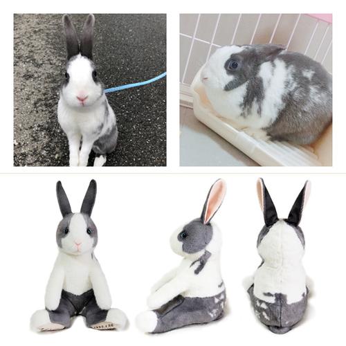 ウサギのぬいぐるみ ウェイトラビット ペットロス
