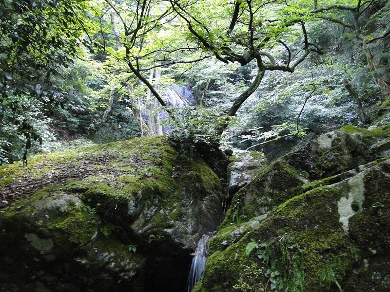 邑南町 天蔵滝 amakura waterfall