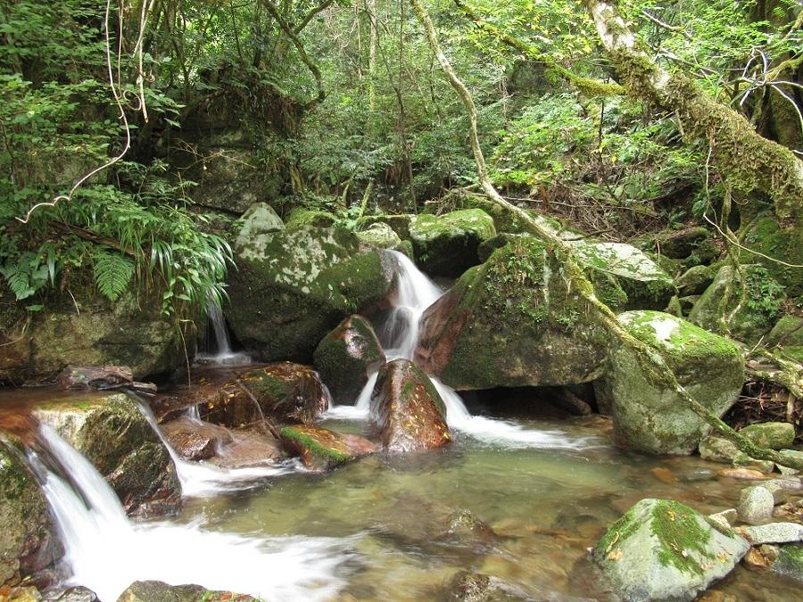 島根 滝 美郷町 遊那の滝