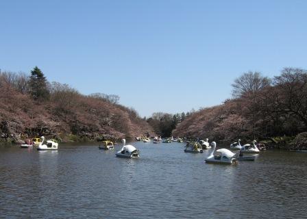 春晴♪空は水色。