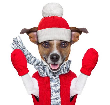 2018年クリスマスイメージ