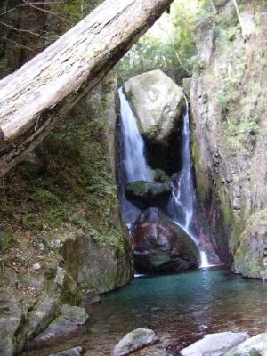 那智四十八滝 なかご 陰陽の滝