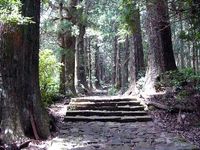 世界遺産 熊野古道 大門坂