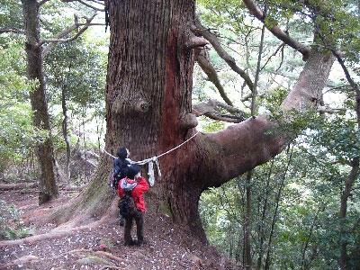 世界遺産 熊野古道 エコツアー