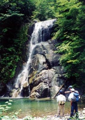 世界遺産 大雲取越 比丘尼の滝