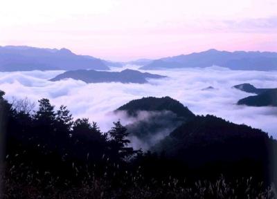 世界遺産 熊野川 雲海 玉置山