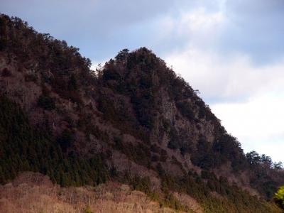 エコツアー 玉置山 宝冠の森
