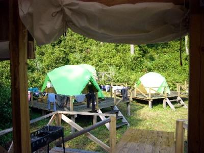 エコキャンプ熊野 朝の風景