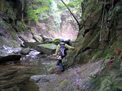 エコツアー 那智原生林と四十八滝巡り