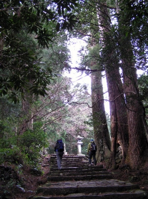 熊野古道ツアー 大門坂