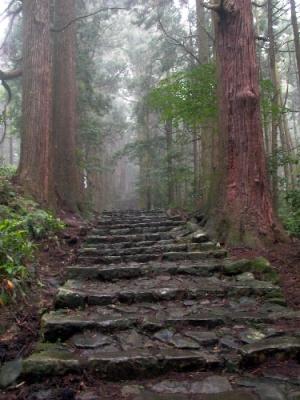 熊野古道ツアー 雨の大門坂