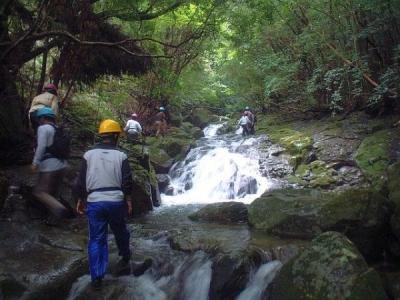 シャワークライミング 沢登り教室 連瀑する滝を行く