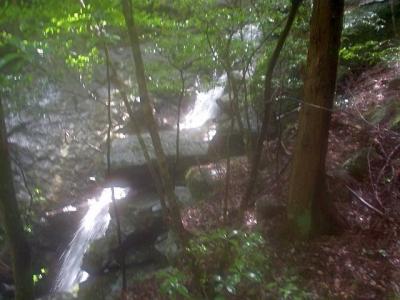 シャワークライミング 沢登り教室 ガンガラの滝