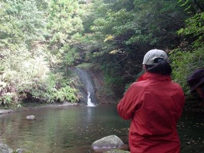 エコツアー 那智原生林と四十八滝巡り ナメラ