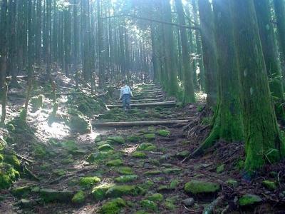 熊野古道ツアー 大雲取越え 胴切り坂