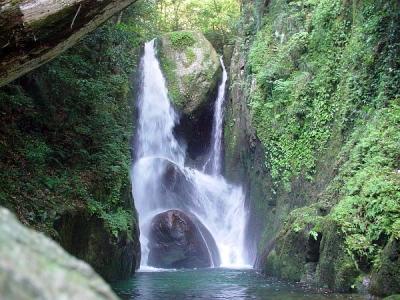 エコツアー 陰陽の滝