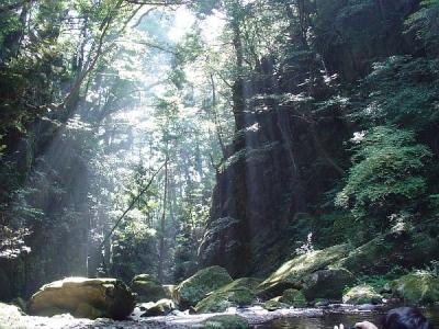 エコツアー 三の滝