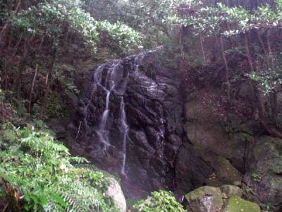 エコツアー 那智四十八滝 夜美の滝