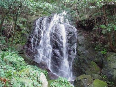 エコツアー 那智四十八滝 夜美(やみ)の滝