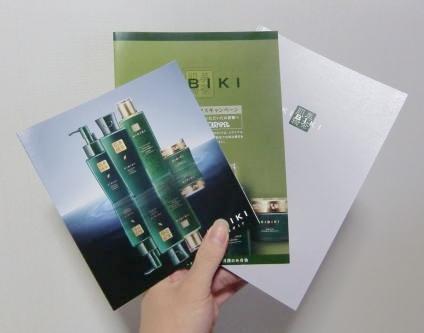 kibiki-panfu-a01