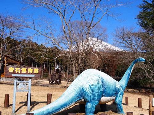 静岡 奇石博物館