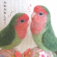 羊毛小桜1