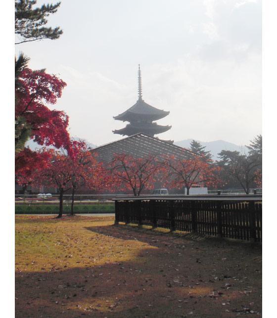 20101127a.jpg