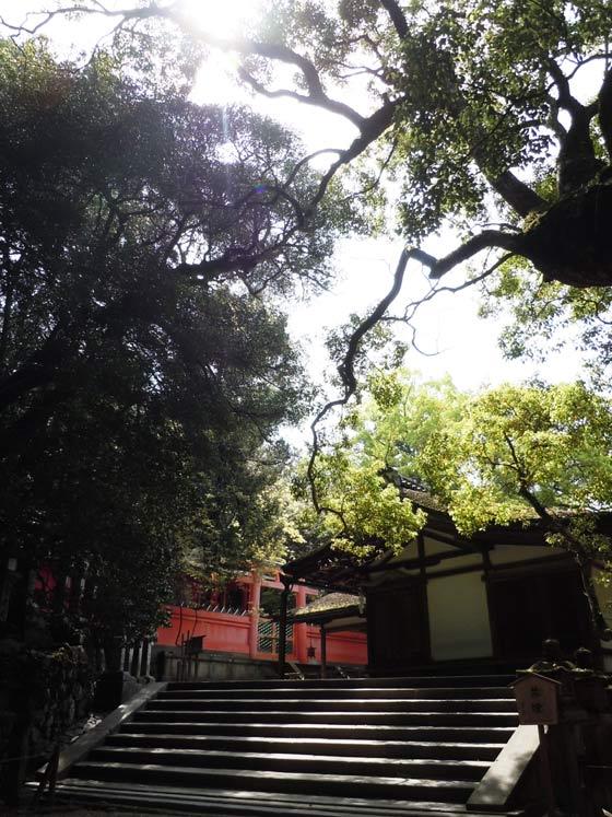 第1番納札社:若宮(わかみや)神社