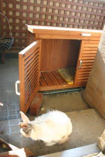ウサギ小屋
