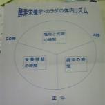 090827_201339_ed.jpg
