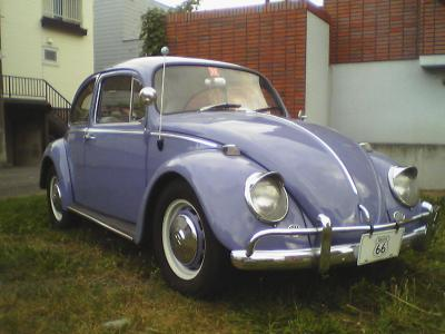 Beetle sep