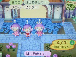 夜桜祭り開催中のひとみさん(左)のあぶく村へ髪をピンクに染めたまりもさん(右)が行ってきましたよ。
