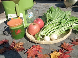 とれたて冬野菜小松菜とセロリのジュース