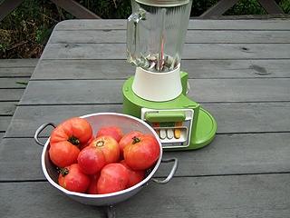 生トマトからつくる簡単トマトソース