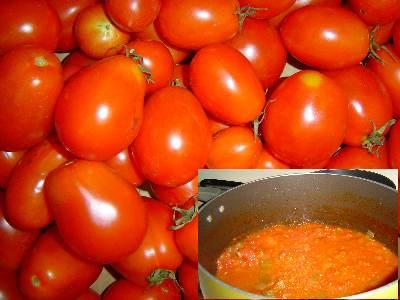 ローマトマトと自家製トマトソース