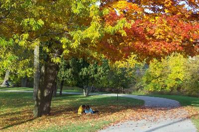 秋の空の下