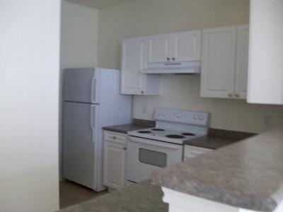 新生活がスタートするアパートのキッチン