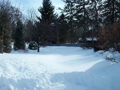 ドライブウェーが雪に埋もれて