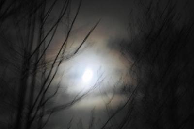 2009年最後の満月でした。