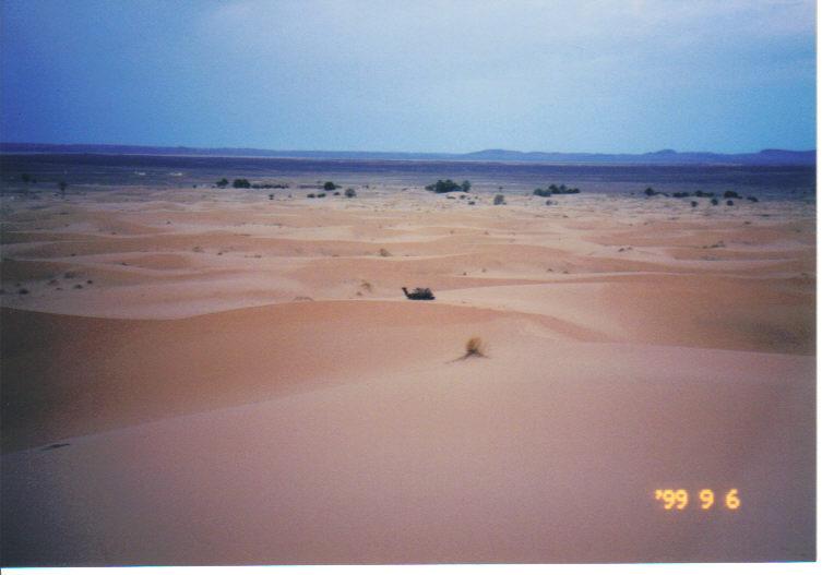 砂漠の地平線