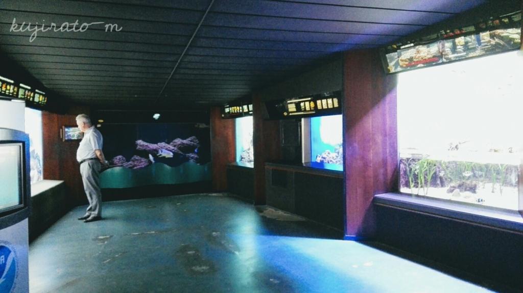 落ち着いた雰囲気のワイキキ水族館